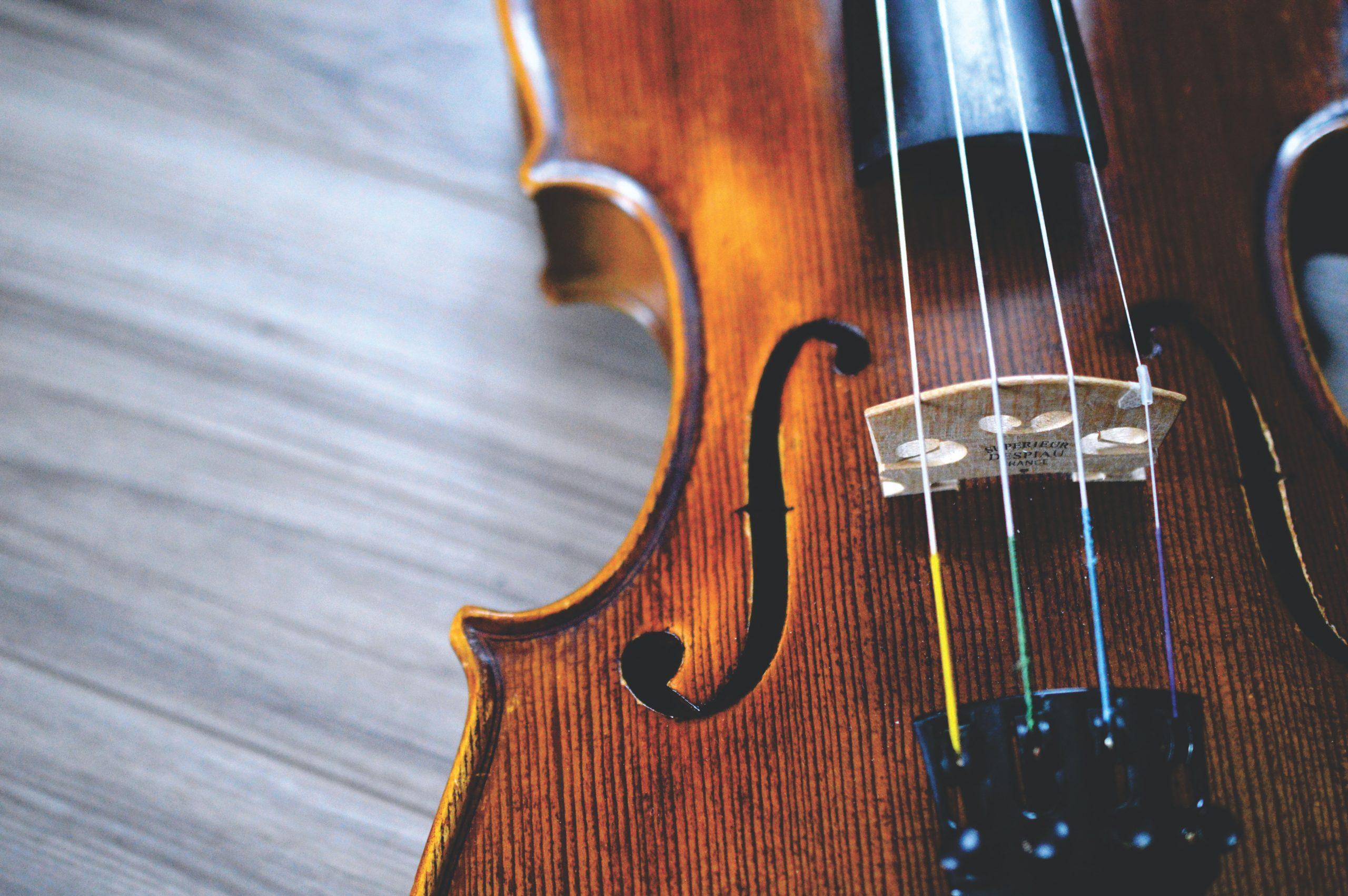 Violin strings in close-up